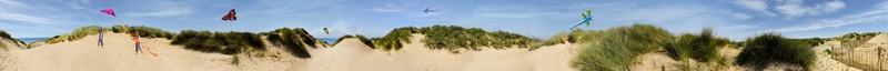 KINGS HOSPITAL Dune Frieze FINAL RETOUCHED